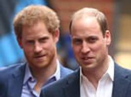 princes william and harry support the diana award in honour of her 20th death anniversary