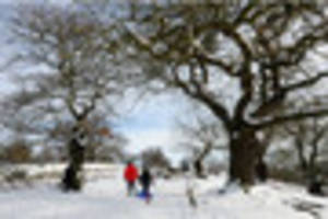 Leicester and Leicestershire weather: Ice and snow warnings...