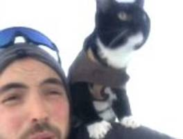 'Hang on man!': Cat hilariously perches on owner's shoulder as the two speed down a snowy hill
