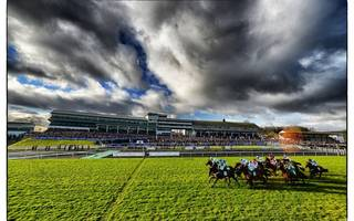 """bookie levy: racing """"is in danger of pricing itself out of friends"""""""