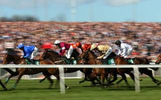 """horse racing gets """"critical"""" multi-million pound boost from levy"""