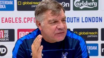 crystal palace: sam allardyce will look to europe for transfer value