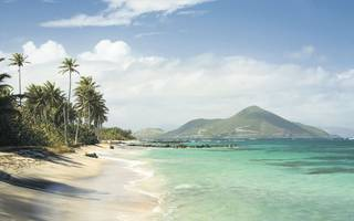enjoy rum, monkeys and luxury in stunning st kitts and nevis