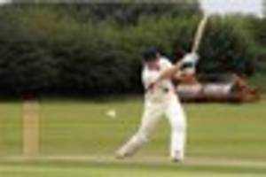 tamworth cc:    woakes lands  role as  coach