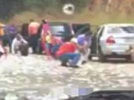 looters filmed stealing cash from car crash scene