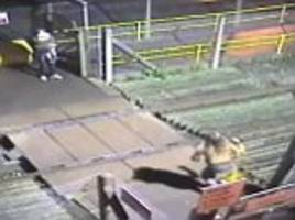 Couple risk toddler's life at Seamer station rail crossing