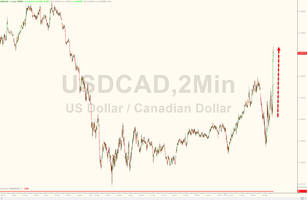 loonie plunges as canadian central bank warns rate cuts remain on the table