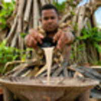 Ask Away: What are the rules on kava?