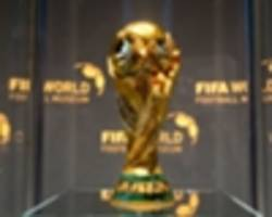 FAI in favour of expanded World Cup