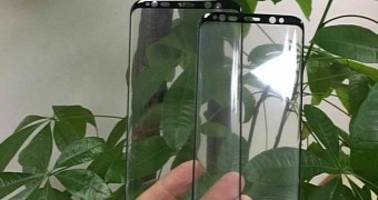 Glass Protectors for the Galaxy S8 Show Many Sensor Openings At The Top