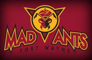 fort wayne mad ants suffer from bad chemistry at the nba development league showcase