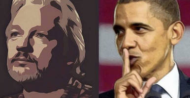 obama makes incredible admission about wikileaks in final press conference