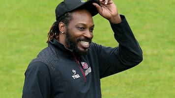 chris gayle: somerset would prefer a player for t20 blast's duration - matthew maynard