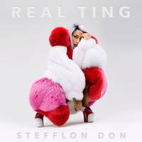 stefflon don: real ting