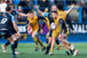 cardiff 37 bristol rugby 21: matthew morgan serves up sublime...