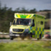 8-year-old girl hurt after being hit by car Auckland