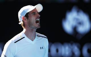 murray vows to bounce back from more melbourne misery