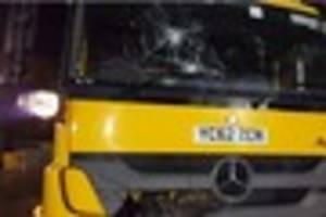 police are hunting for the person who pelted a gritting lorry as...