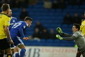 who is cardiff city's new goal scoring hero rhys healey? and why does neil warnock call him a 'little rash'