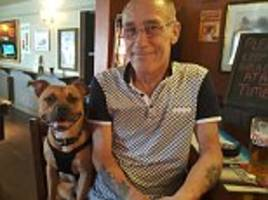 staffordshire bull terrier tried to rescue owner drowning