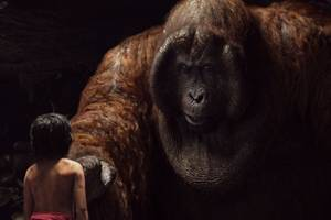 'the jungle book' and 'game of thrones' win big at visual effects society awards