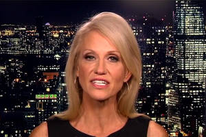everyone seems to think kellyanne conway violated ethics rules