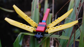 Wetland recreated in Lego, including insects