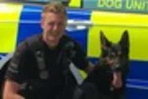 Essex Police officer and dog save life of missing injured...