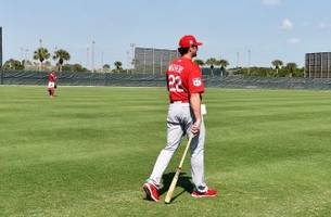 images from jupiter: cardinals spring training 2017