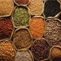 Foodgrain production to reach record 272 million tonnes in 2016-17