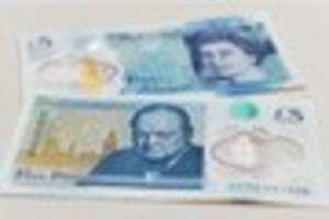 Animal fat £5 note WON'T be replaced, despite protests