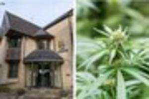 Bath man Dean Anthony Morgan accused of growing 17-plant ...