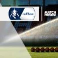 wolverhampton v chelsea at molineux stadium : match preview