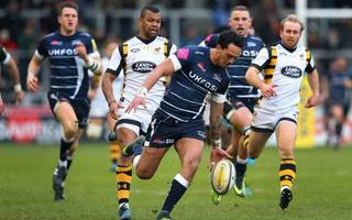 wasps deny complacency despite sale setback