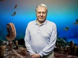 attenborough's back for blue planet ii... at age of 91!