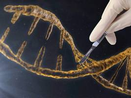 a us panel has endorsed limited genetic modification of humans — here's what that means