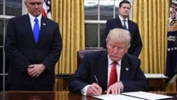 disrupter donald trump marks first month in office