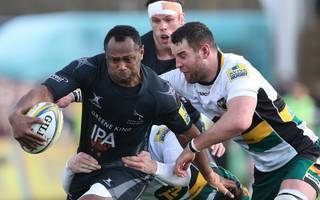 why newcastle falcons are soaring higher than richer rivals