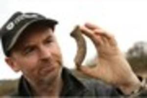 watch: neolithic hand axe among items found during hartshorne...