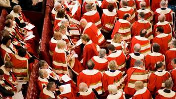 brexit: house of lords must not 'mess around' with bill