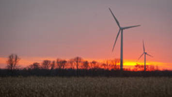 wind company asks court to force federal goverment to pay $28m damage award