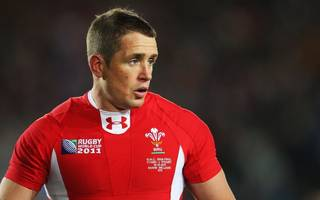 shane williams: i couldn't sit still after retiring from rugby