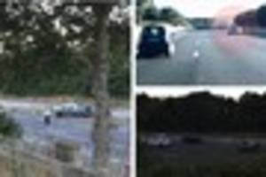M5 wrong way driver killed after smashing into cars was confused...