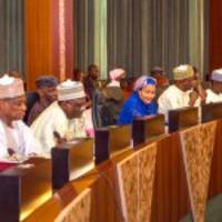 Nigerian govt approves new environment policy