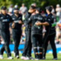 three things we've learnt about the black caps