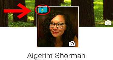 Facebook now lets you add your flag to your profile photo