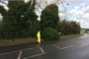 chelmsford road partially blocked by fallen tree