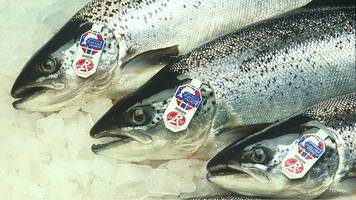 health issues hit growth for the scottish salmon company