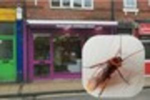 Normanton takeaway Shawarma X Express Wraps closed down over...