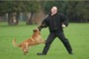 Westcountry pooches finish top dogs at 'police Crufts' trials